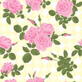 Beautiful seamless pink roses pattern on light background Royalty Free Stock Photo