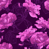 Beautiful Seamless Rose Background Royalty Free Stock Photography