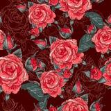 Beautiful Seamless Rose Background Stock Photography