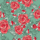 Beautiful Seamless Rose Background Royalty Free Stock Images