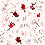 Beautiful seamless rose pattern Stock Photo