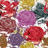 Beautiful seamless roses Royalty Free Stock Photos