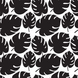 Beautiful seamless tropical jungle floral graphic seamless backg Royalty Free Stock Images