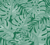 Beautiful seamless tropical jungle floral pattern background Royalty Free Stock Photography
