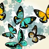 Beautiful seamless vector  pattern with butterflies Royalty Free Stock Images