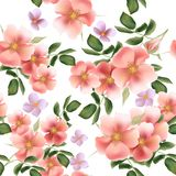 Beautiful seamless vector pattern with wild  roses Royalty Free Stock Photos