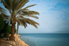 Beautiful Seascape. A high-resolution image of a beautiful seascape found in Khobar, Saudi Arabia Stock Image