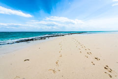 Beautiful seascape with footprints on a shore Stock Image