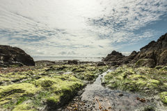 Beautiful seascape on low tide Stock Photo