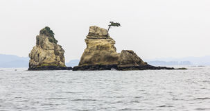 Beautiful seascape with rocks in Matsushima, Japan. Royalty Free Stock Image