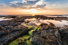 Beautiful seascape. Sunset over the sea rock and shore. A thin orange line at the horizon and the blue sky background and moss on. Rock foreground with the Stock Image