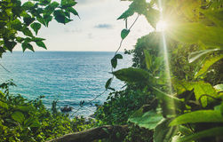 Beautiful Seascape Walking path in green forest Royalty Free Stock Photo