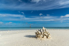 Beautiful seascape with white sand beach and beautiful turquoise Stock Images