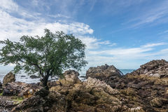 The beautiful seaside rocks at  Kung Wiman, Thailand. Stock Photo