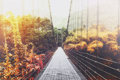 Beautiful season change forest and sunlight, with steel suspension bridge at foggy day in the morning, vintage tone Royalty Free Stock Image