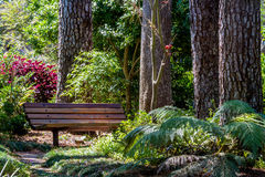 A Beautiful Secluded Park Bench in the Garden Stock Photos