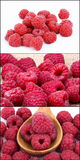 A beautiful selection of raspberries Stock Photography
