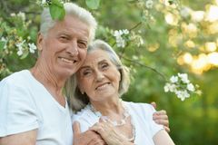 Portrait of beautiful senior couple hugging in the park stock images