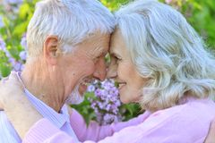 Portrait of beautiful senior couple hugging in spring park stock photos