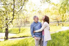 Beautiful senior couple in love outside in spring nature. Stock Photo
