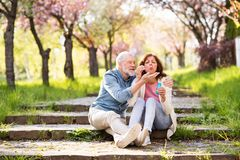 Beautiful senior couple in love outside in spring nature. Royalty Free Stock Photos