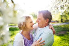 Beautiful senior couple in love outside in spring nature. Royalty Free Stock Images