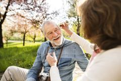 Beautiful senior couple in love outside in spring nature. Stock Photos