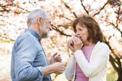 Beautiful senior couple in love outside in spring nature. Royalty Free Stock Photography