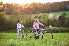 Beautiful senior couple with bicycles outside in spring nature. royalty free stock images