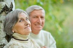 Beautiful Senior couple Stock Photography