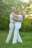 Portrait of beautiful senior couple dancing in the park royalty free stock photos
