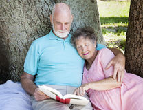 Beautiful Senior Couple Reading Stock Images
