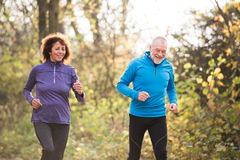 Beautiful senior couple running outside in sunny autumn forest. Beautiful active senior couple running together outside in sunny autumn forest Stock Images