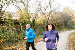 Beautiful senior couple running outside in sunny autumn forest. Beautiful active senior couple running together outside in sunny autumn forest Royalty Free Stock Photos