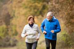 Beautiful senior couple running outside in sunny autumn forest. Beautiful active senior couple running together outside in sunny autumn forest stock image