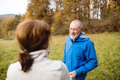 Beautiful senior runners resting outside in sunny autumn nature Stock Images