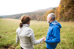 Beautiful senior runners resting outside in sunny autumn nature Stock Photography