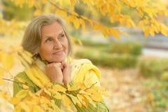 beautiful senior woman Stock Images