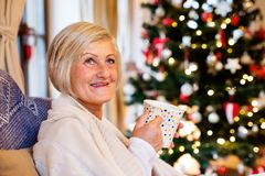Senior woman in front of illuminated Christmas tree. Beautiful senior woman sitting on couch in front of illuminated Christmas tree inside in her house enjoying Royalty Free Stock Photo