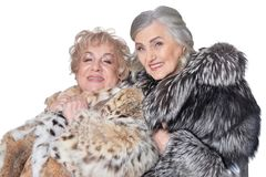Portrait of beautiful senior women in fur coats. Beautiful senior women in fur coats on white background stock images