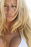 Beautiful Sensual Blond Woman Close Up Portrait Stock Photography
