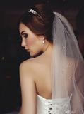 Beautiful sensual bride with dark hair in wedding dress Stock Photos