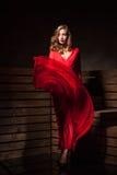Beautiful Sensual Woman in Long Fashion Red Dress Stock Image