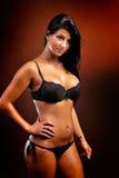 Beautiful sensual woman posing in lingerie Royalty Free Stock Images