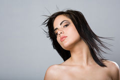Beautiful sensual young brunette. Royalty Free Stock Photos