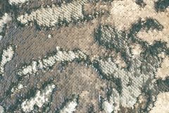 Beautiful sequin texture with divorces that looks like fish scales stock images