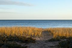 Beautiful serene beach scene with grass and lake Royalty Free Stock Photography