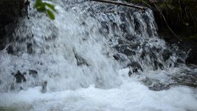 Beautiful serene small mountain creek waterfall in lush summer forest stock footage