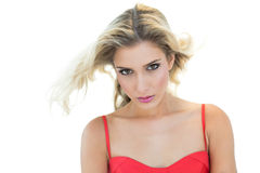 Beautiful serious blonde model looking at camera Stock Image