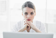 Beautiful serious businesswoman looking at camera Royalty Free Stock Photos